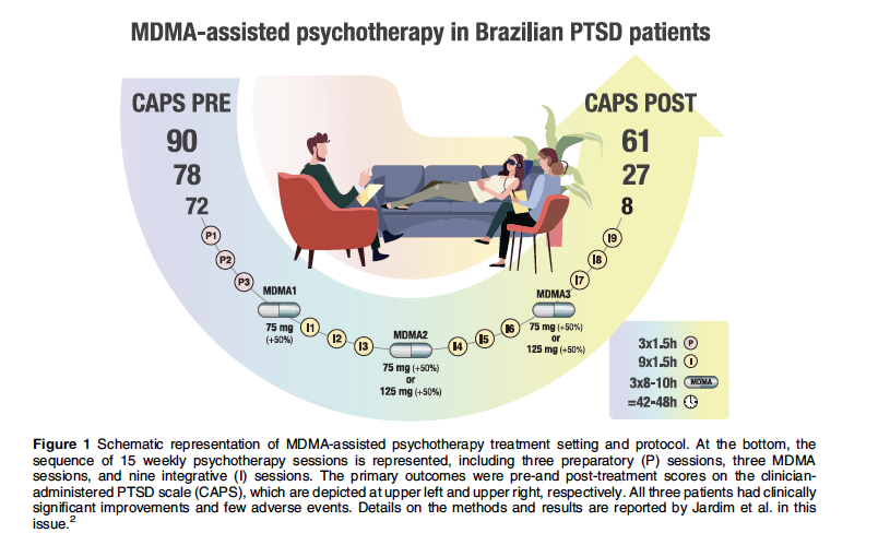 Psychedelic drugs as new tools in psychiatric therapeutics
